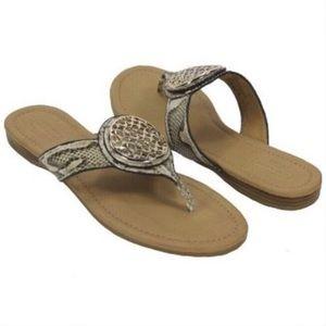 Coach Python Sena Thong Sandals 8B